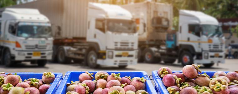 transporte-alimentos